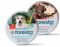 Bayer Форесто ошейник для котов и собак от блох и клещей 70 см