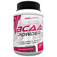 BCAA - Лейцин, Изолейцин, Валин TREC NUTRITION BCAA POWDER  400 г