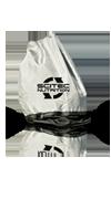 Сумки и рюкзаки Scitec Nutrition Bag 62x32 cm silver