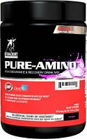 BCAA - Лейцин, Изолейцин, Валин Betancourt Nutrition Pure amino 336 г  фруктовый пунш
