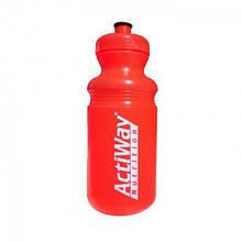 Спортивная бутылка ACTIWAY (550 ml)