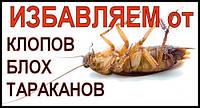 Уничтожить тараканов, прусаков