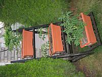 Стелажи садовые.