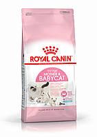 Royal Canin (Роял Канин) Mother BabyCat - корм для котят 4кг