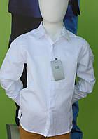 Рубашка для мальчика школа белого цвета с блеском Турция
