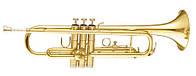 Труба MAXTONE TTC30L (TTC1C) (21224)