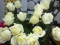 Доставка  цветов,гелиевых шаров,фруктовых корзин,подарков , грузов в Сумах