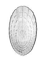Набор стеклянных тарелок (селедниц) Pasabahce Atlantis 2шт 240*147мм