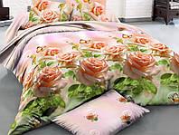 Двуспальный набор постельного белья Ранфорс №184