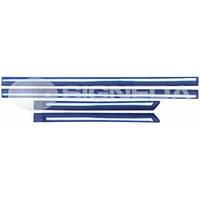 Молдинги дверей с хромом комплект Ford Focus 05-08 PFD87002(K) 5M51R20939