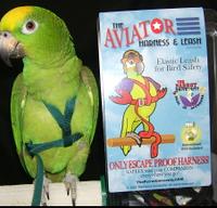 Шлейка для средних попугаев (Жако Амазон) AVIATOR MEDIUM (оригинал) + DVD