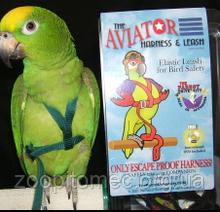 Шлея для середніх папуг (Жако Амазон) AVIATOR MEDIUM (оригінал) + DVD