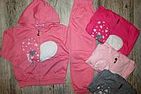 Трикотажный костюм - двойка для девочек Glass Bear  86-92-98-104-110-116рр