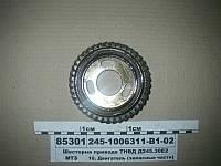 Шестерня привода ТНВД Д245.30Е2 (пр-во ММЗ)