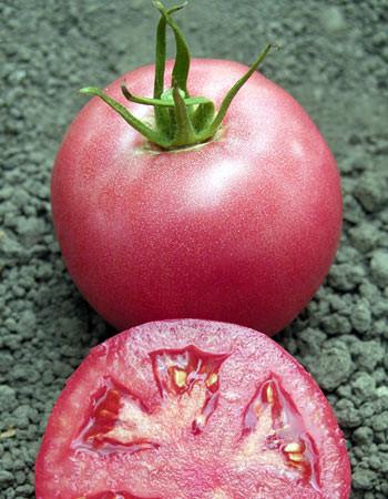Індетермінантний Томат рожевий для споживання у свіжому вигляді