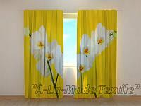 Фотошторы 3D Белые орхидеи на желтом