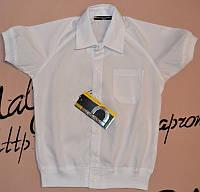 Рубашка белая от 110 до 122 Blueland