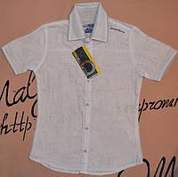 Школьная рубашка для мальчика от 110 до 128 Blueland