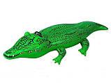 Надувной плот Intex 58546 крокодил 168 х 86 см, фото 4