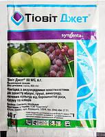 Тиовит Джет фунгицид с акарицидными свойствами для защиты сада и овощных культур от заболевания и клещей