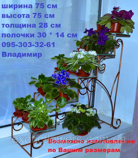драбинка для фіалок, підставка для квітів