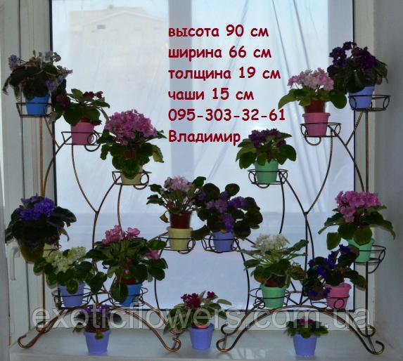 асиметрія, підставка для квітів