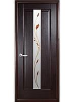Дверь ПРЕМЬЕРА Р-1  венге