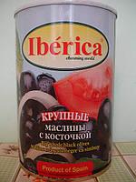 """Маслины с косточкой, крупные (Испания """"Iberica"""", ж/б, 420 гр.)"""