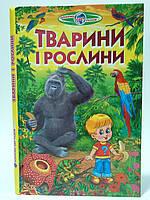 Пізнаємо світ разом Тварини і рослини