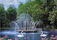 Фотообои с лебедями Белый танец