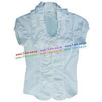 Блуза для девочек Avin501 х/б 3 шт (9-12 лет)