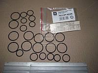 Рем комплект секции ТНВД Д-245, Д-260 6 цил. РТИ  363.1111-01