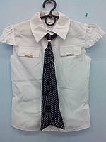 Блуза з галстуком для дівчинки (Польща)
