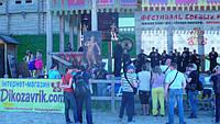 Фестиваль Школы Кунг-фу Черная пантера
