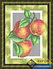 Схема для вышивки бисером - Кухонный натюрморт персики на ветке, Арт. НБп4-070