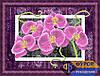 Схема для вышивки бисером - Букет орхидей, Арт. НБч4-075-1