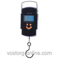 Весы 50 кг кантер, весы для дома, кантер 40кг/50кг, 602/2002 (02L),