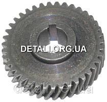 Шестерня электропилы Интерскол 2000 D815 (d54,5*15 / 39 зубов вправо шпонка)