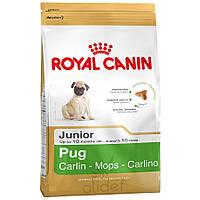Royal Canin (Роял Канин) PUG JUNIOR (ПАГ ДЖУНИОР) Сухой корм для щенков  мопса в возрасте до 10 месяцев