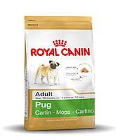 Сухой корм Royal Canin Pug Adult для взрослых собак старше 10 месяцев 0.5 кг