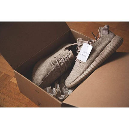 Кроссовки Adidas Yeezy Boost 350 Oxford, фото 2
