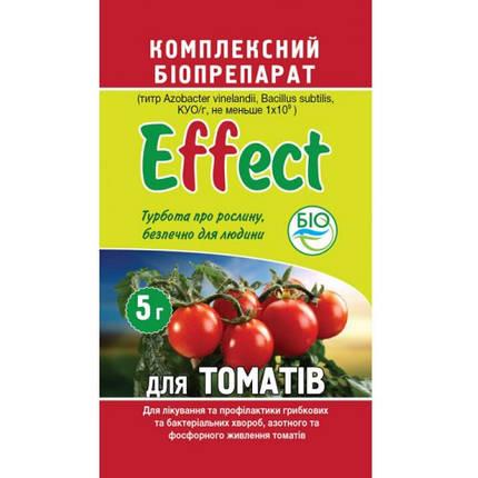 Биофунгицид Effect на томаты 5 г — защита фруктов, овощей и ягод от болезней, фитофтора, альтернариоз, фото 2