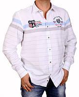 Рубашка мужская Paul Shark-1351 голубая