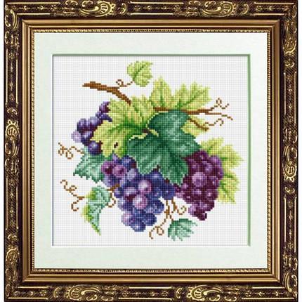 """Набор алмазной живописи """"Гроздь винограда"""", фото 2"""