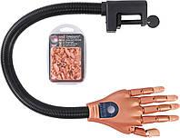 Нейл Тренер,тренеровочная рука для отработки наращивания, покрытия и дизайнов,со сменными ногтевыми пластинами