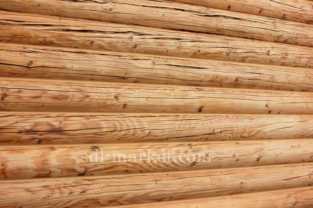Защита древесины 1