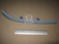 Полоска под правой фарой на Ситроен Берлинго выпуска до 2002 года. (пр-во TEMPEST)