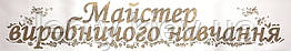 Майстер виробничого навчання - стрічка з золотистою фольгою, атлас Белый