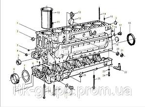 Каталог блока двигателя WD615