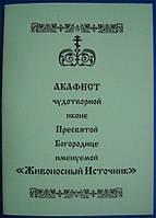 """Акафист чудотворной иконе Пресвятой Богородице именуемой """"Живоносный Источник"""""""